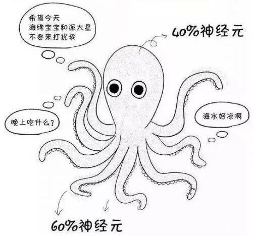且看大神的「章鱼就是边缘计算」无敌理论