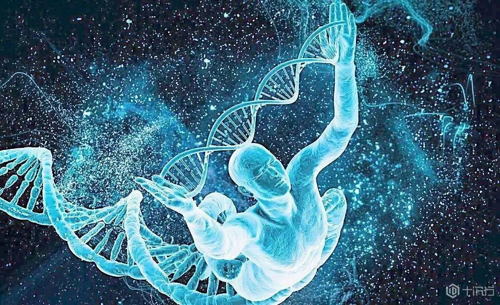 乔布斯、安吉丽娜.朱莉都用过的基因检测,为什么需要超算力量?